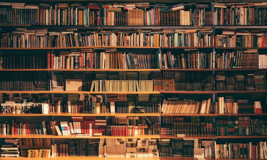Books Starring Minorities