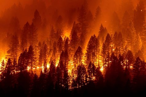 California Wildfire Season — And How Its Getting Worse